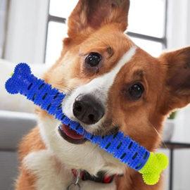 koska za čišćenje zuba